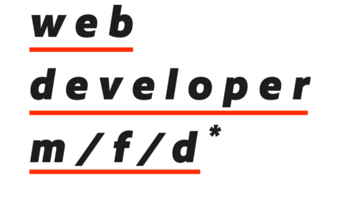 web developer (m/f/d)*